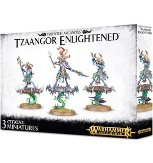 Tzeentch Arcanites Tzaangor Enlightened Warhammer Age of Sigmar