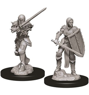 D&D Figur Nolzur Human Fighter Female Nolzur's Marvelous Miniatures - Umalt