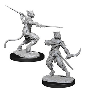 D&D Figur Nolzur Tabaxi Rogue Male Nolzurs Marvelous Miniatures - Umalt