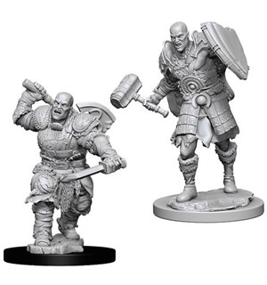 D&D Figur Nolzur Goliath Fighter Male Nolzur's Marvelous Miniatures - Umalt