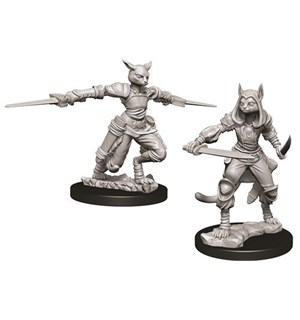 D&D Figur Nolzur Tabaxi Rogue Female Nolzur's Marvelous Miniatures - Umalt