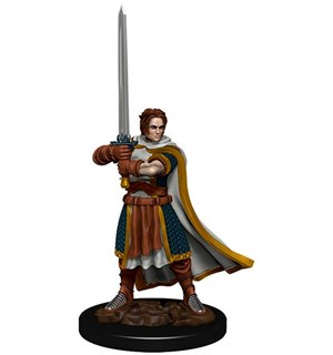 D&D Figur Icons Human Cleric Male Icons of the Realm Premium Figures