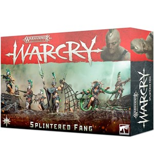 Warcry Warband The Splintered Fang Warhammer Age of Sigmar