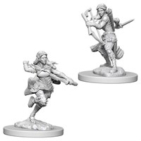 D&D Figur Nolzur Air Genasi Rogue Femal Nolzur's Marvelous Miniatures - Umalt