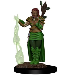 D&D Figur Icons Human Druid Female Icons of the Realm Premium Figures