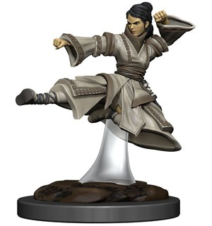 D&D Figur Icons Human Monk Female Icons of the Realm Premium Figures