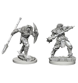 D&D Figur Nolzur Dragonborn Fighter Mal Nolzur's Marvelous Miniatures - Umalt