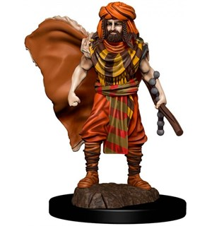 D&D Figur Icons Human Druid Male Icons of the Realm Premium Figures